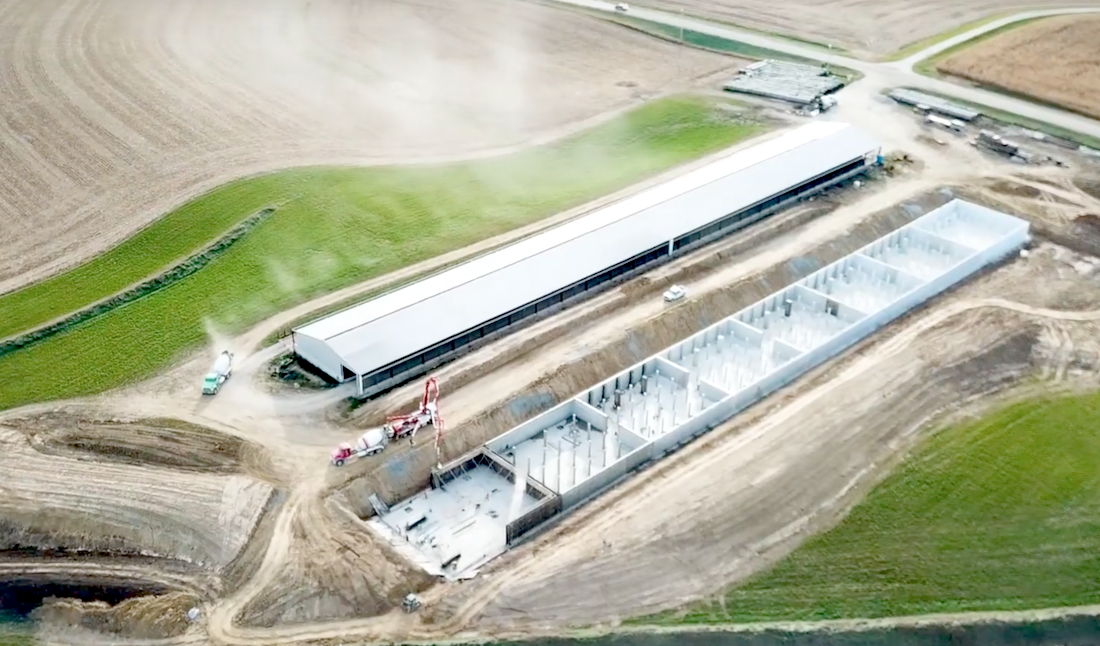 overhead shot of cattle containment barn